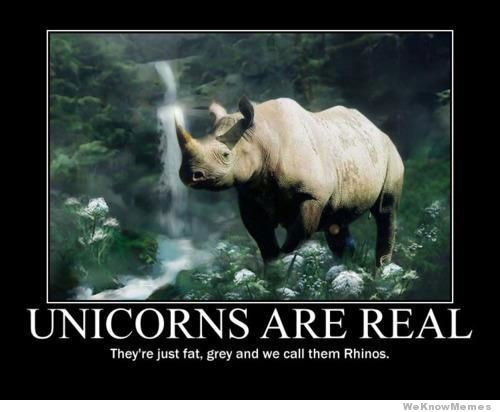 http://weknowmemes.com/wp-content/uploads/2013/01/unicorns-are-real.jpg